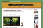 Webdienstleistungen für www.berndholz.de